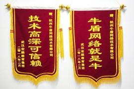 武汉宏鹏教育集团向牛盾网络送来锦旗和感谢信