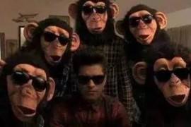 OMG!是什么让程序猿也开始假摔了?